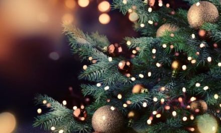 7 Best Stores for Buying Christmas Trees in 2021