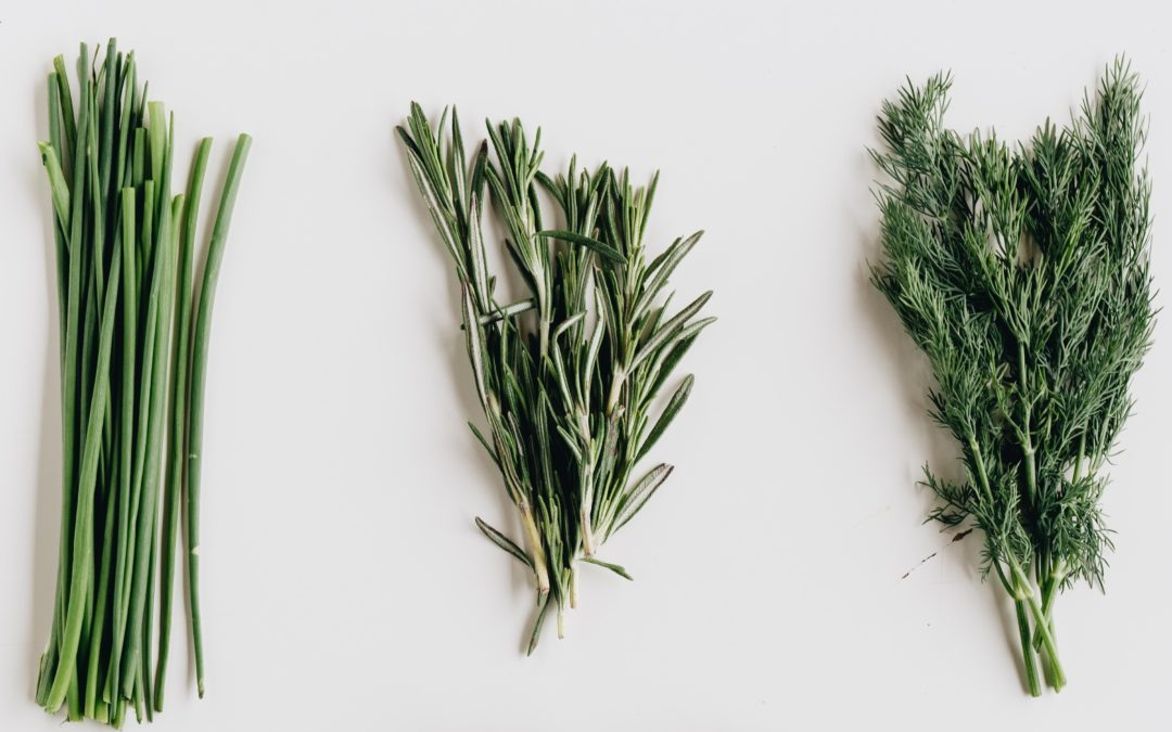 Guide to Buying Herbs in Hong Kong: 8 Picks